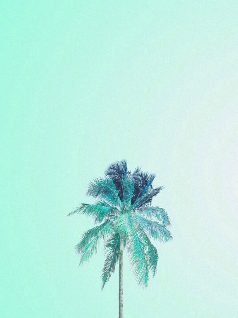 🌴 Tropical #1