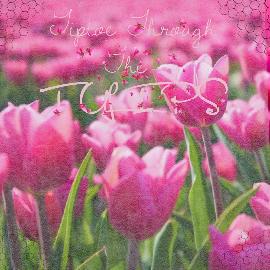 I love Spring!!!🌷🌷💖😊