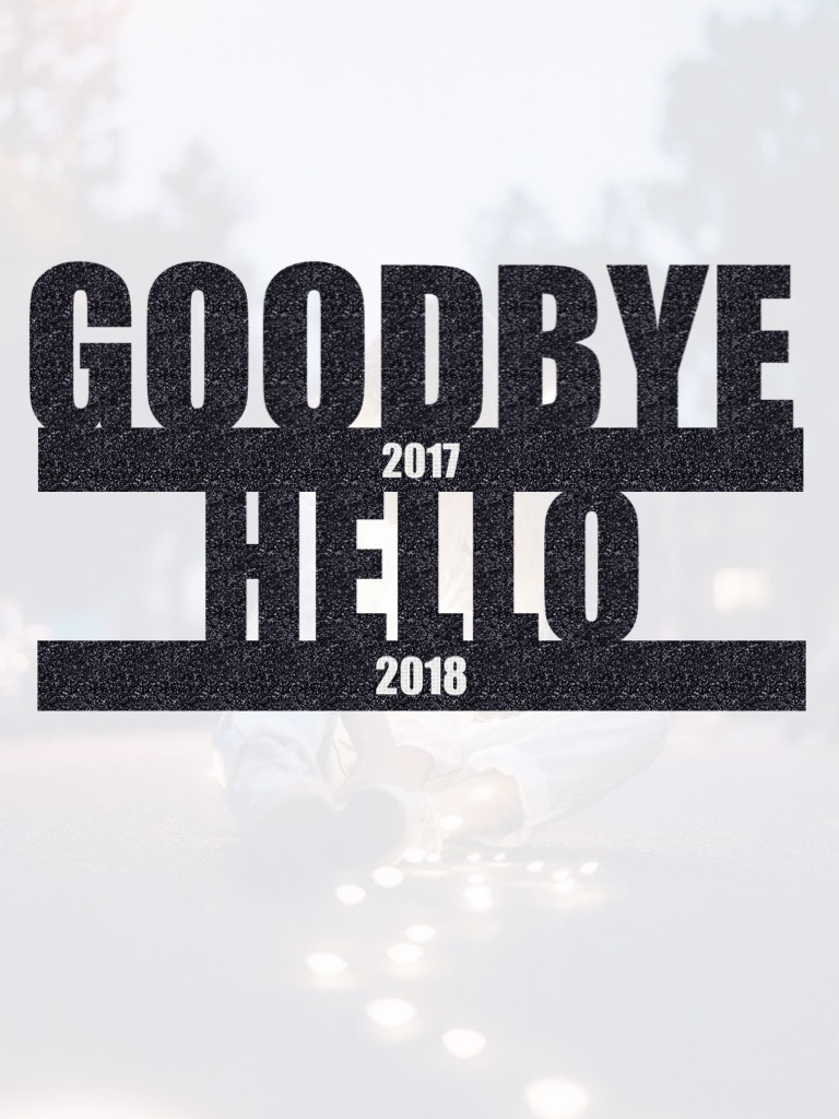 2017 was kinda a sucky year, so hopefully 2018 is better! HAPPY NEW YEARS!!