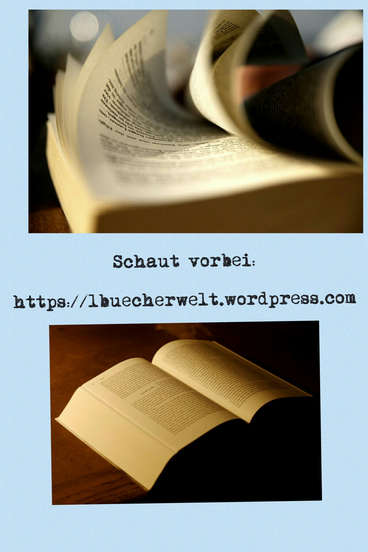 Meine Webseite: https://lbuecherwelt.wordpress.com