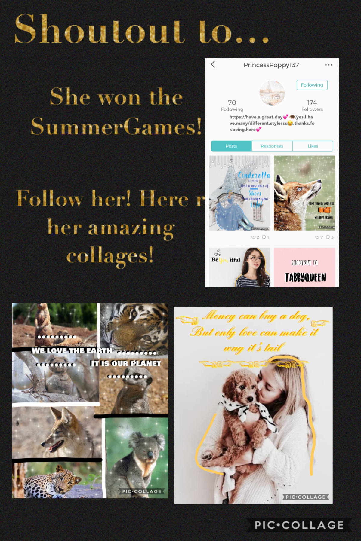 Collage by Back2SchoolGames