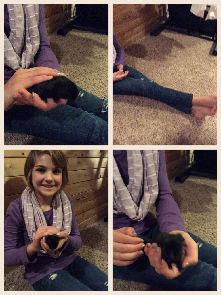 Me held a baby bunny and it peed on me but I still love them no matter what