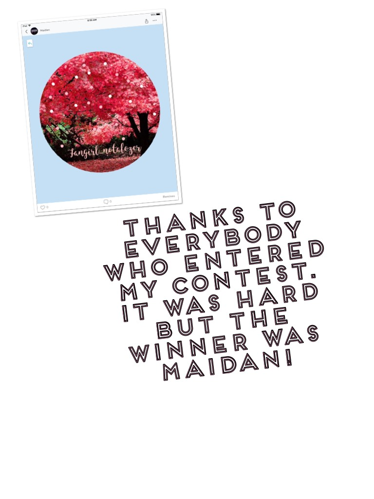 Thanks to everybody who entered my contest. It was hard but the winner was maidan!
