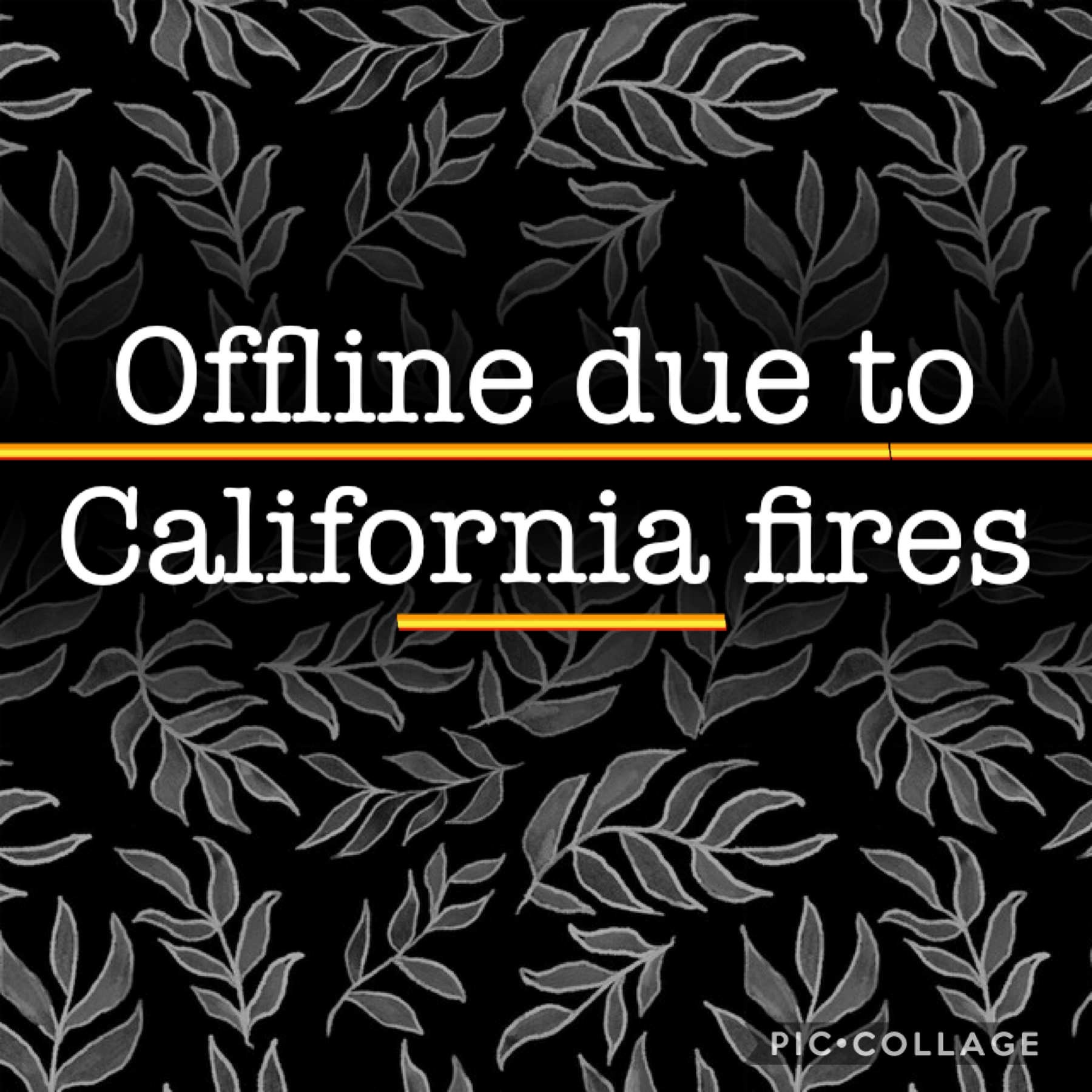 ⚠️Will be posted in comments as well⚠️ Please be patient with me during this time. I most likely will have to evacuate from where I live and it is a stressful time for me and my near by family. I hope to post regularly soon  Remember that I love you, you