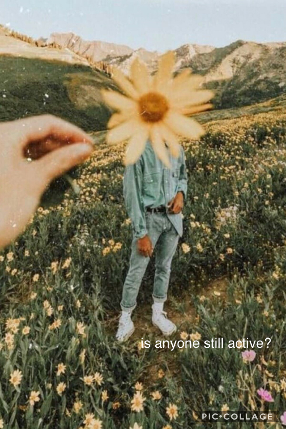 is anyone still active 💫♥️