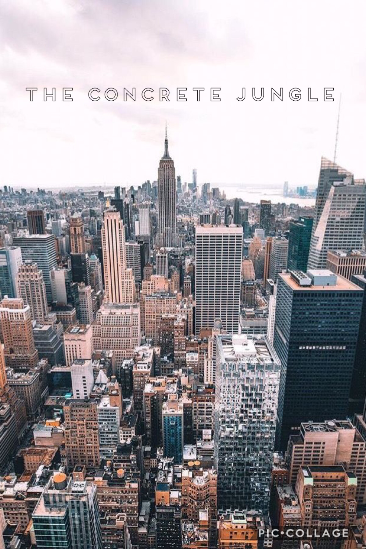 I'M OFFICIALLY GOING TO NYC IN AUGUST GUYS!!! but most of all, I'm going to Pennsylvania to meet and stay with my internet friend and we get to drive to nyc! I just booked my plane ticket yesterday & I'm beyond excited ❤️ this is my dream y'all