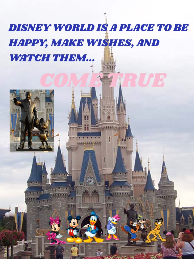 disney world is a place to be happy, make wishes, and watch them...COME TRUE!