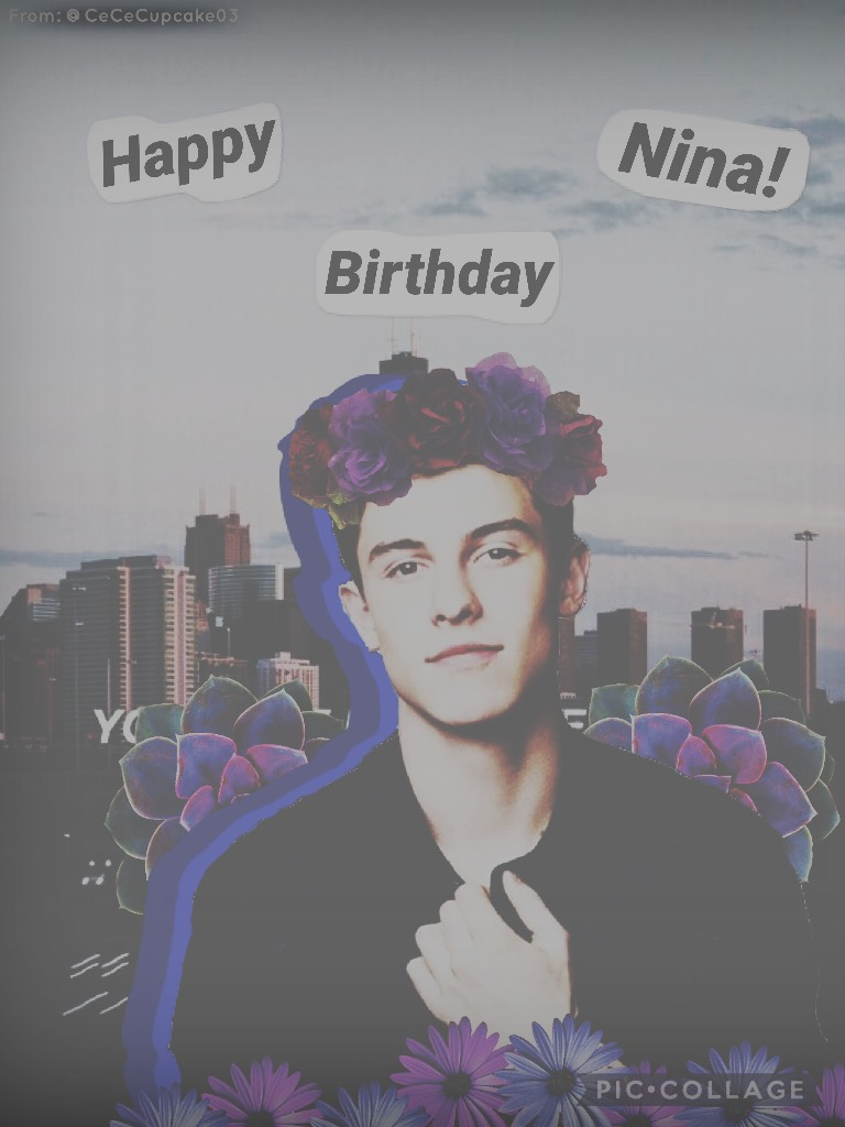 🎊🎁tappppppyyyyyyyy🎁🎊  For: Nina (@-butteredpopcorn-)🎉 Ik you like Shawn so....😌 Ur birthday was days ago but I hope you like it anyways☺️💓 Hope ur day was as fAbUlOuS as youuu❣️