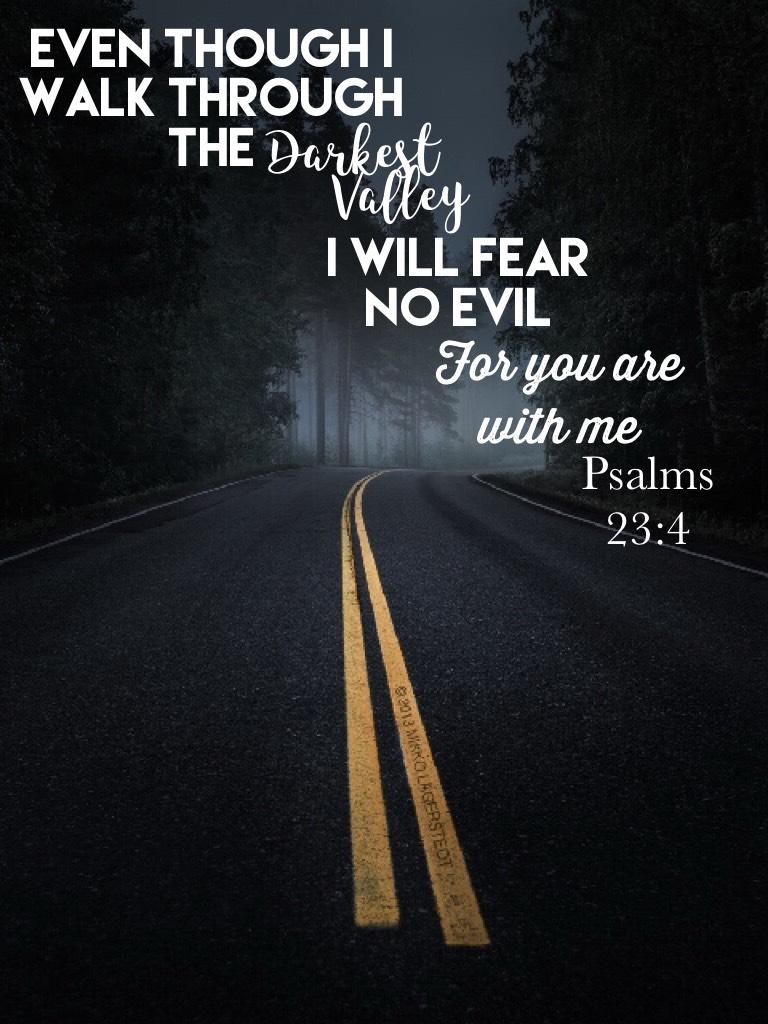 Fear No Evil ✨