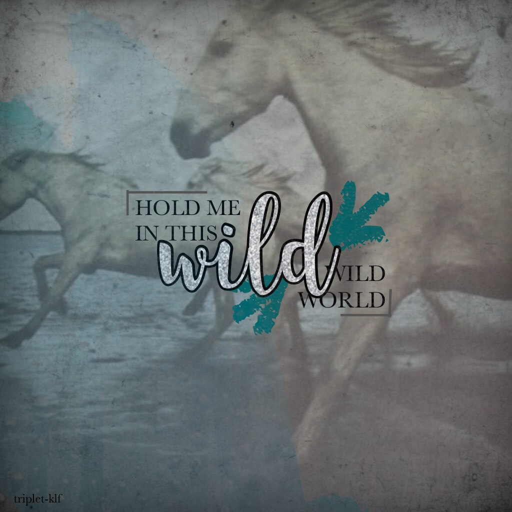 I started listening to Bastille close to four years ago but then I stopped before Wild World came out and now I'm finally getting around to listen to Wild World and guys, I'm OBSESSED! Go listen to that amazing album! ✨ Lyrics from Warmth by Bastille. 🌻