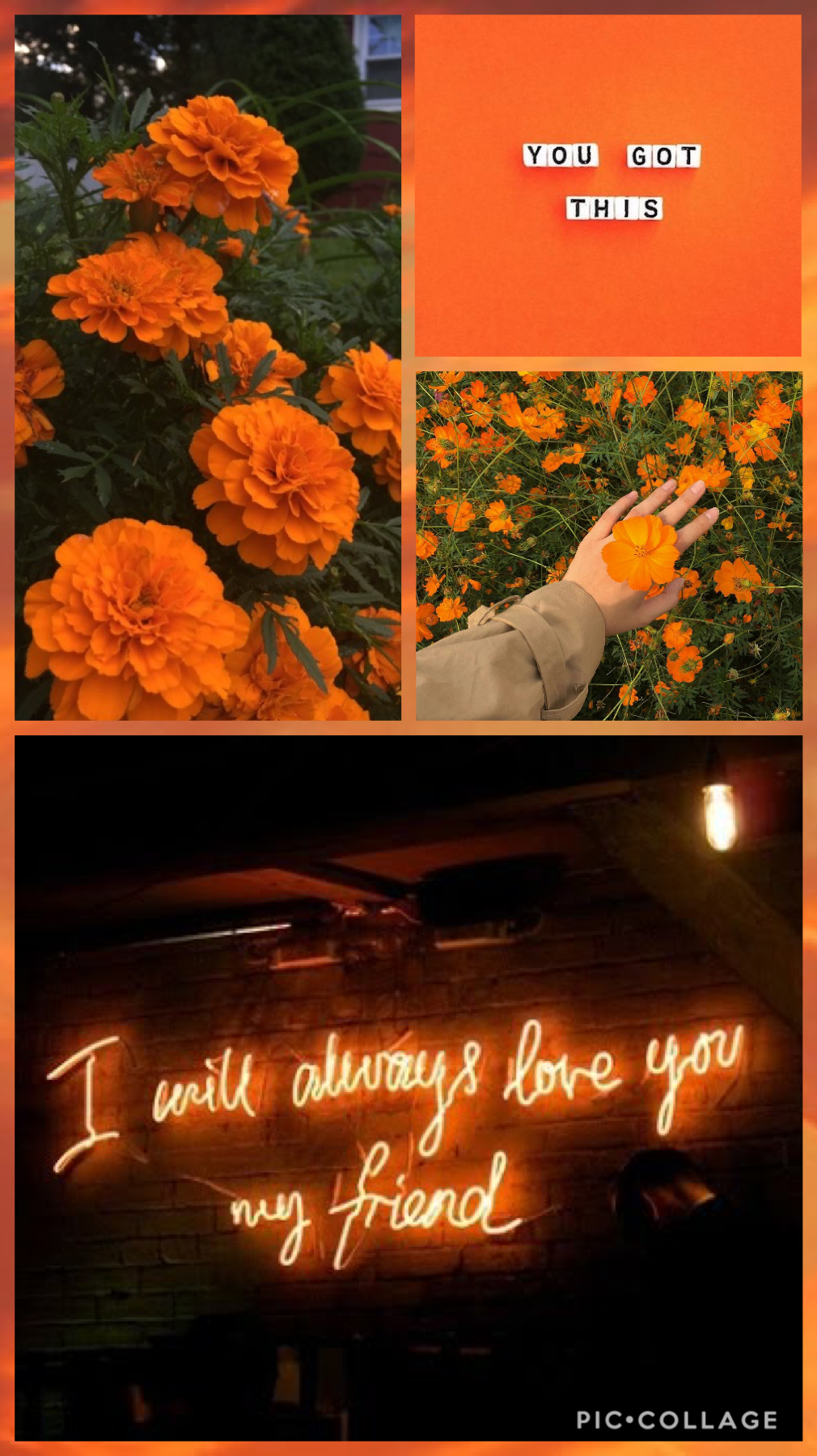 Collage by -meetmeintheafterglow-