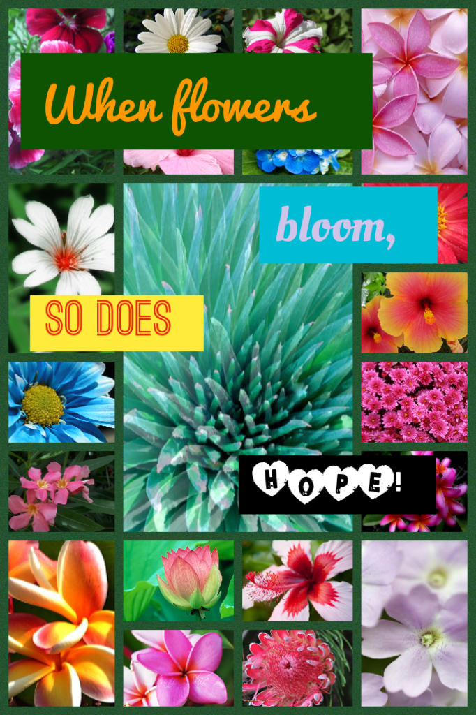 When flowers bloom, so does HOPE!