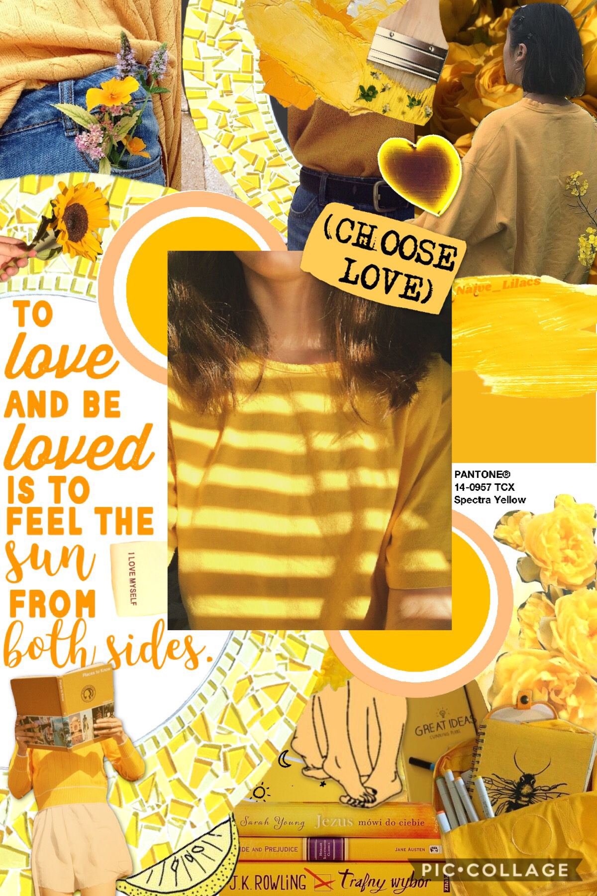 wow this took a while to make💛I made this on @ShatteredCrystal's phone😊I'm pretty proud of this🌼thoughts on this?💭