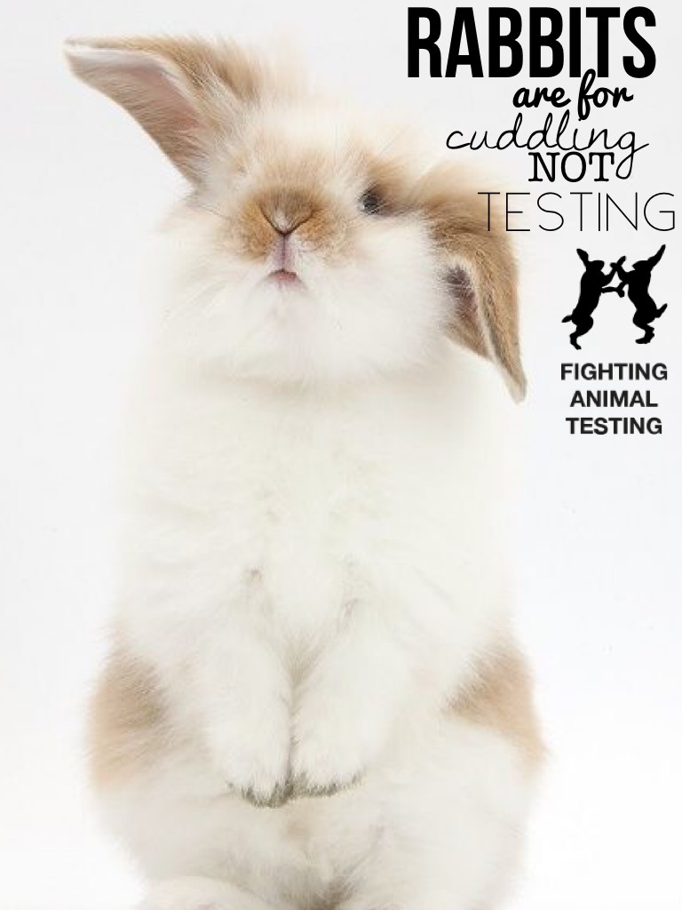 Comment #stopanimaltesting if you are AGAINST animal testing!