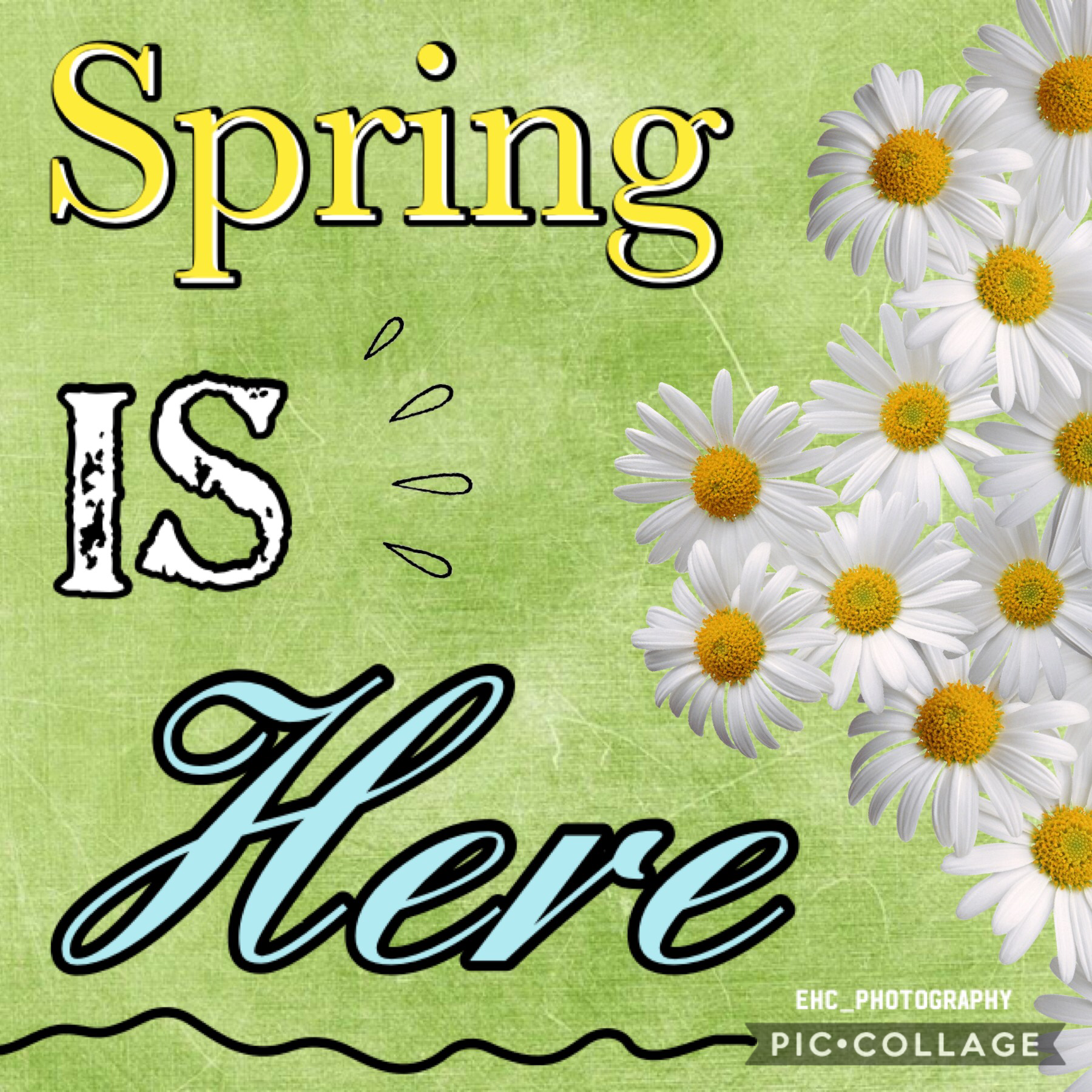 Happy Spring Equinox! 😊 🌧 🌼 It's a bit warmer today so hopefully it'll stay  🌱 this way for a while. 👌🏻 It's also International Day of Happiness, 🥰 National Proposal Day, 💍 and Snowman Burning Day. 😂 🔥 ⛄️ I've procrastinated so much lately I need help. 😶