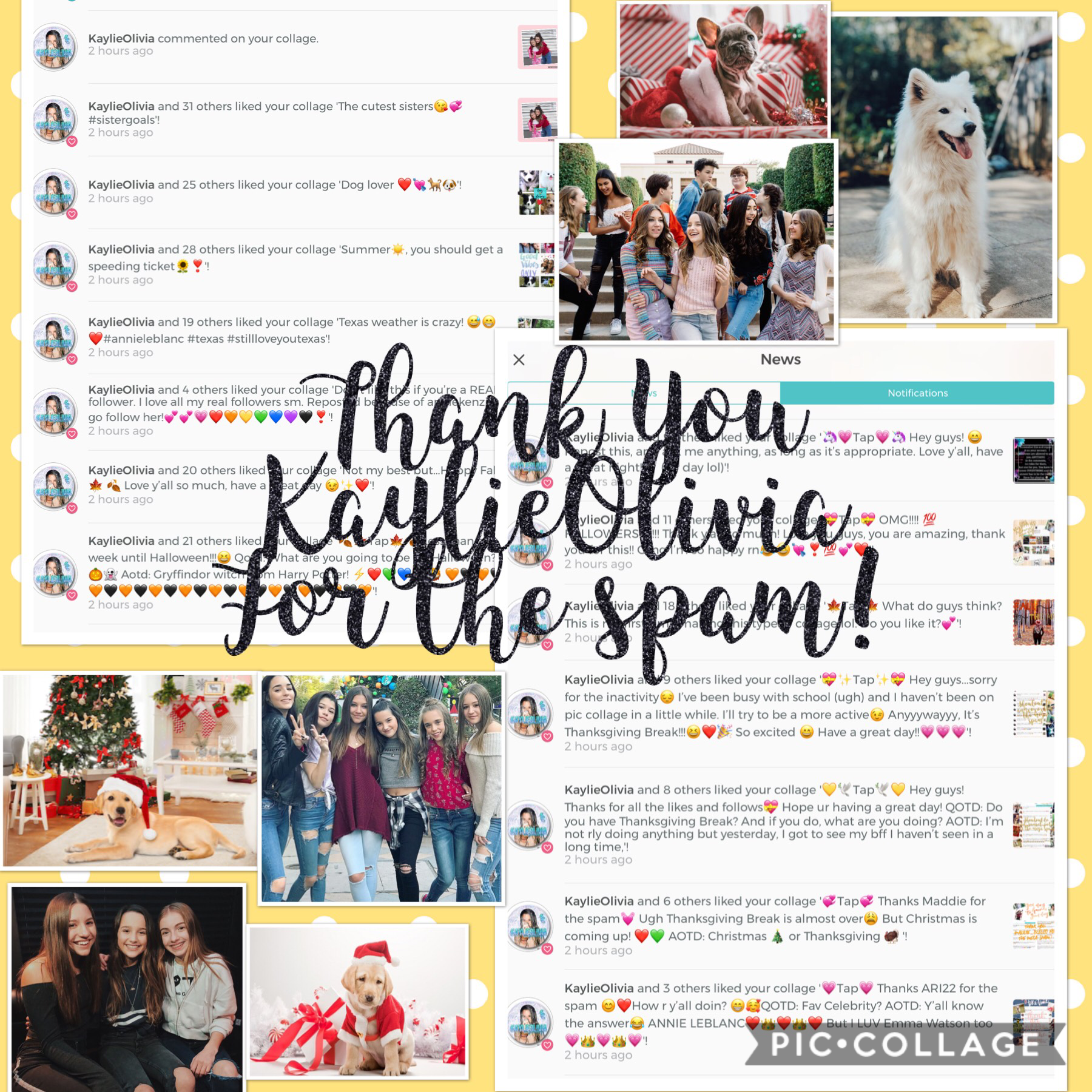💛🎄Tap🎄💛 Thx KaylieOlivia 4 the spam 💖 it's almost CHRISTMAS!!!🎄❤️💚!!! Aaaaand my birthday (December 19) 😜 So excited to celebrate w my friends and family! QOTD: Are you going out of town for Christmas? AOTD: Nope just celebrating with my family and friend