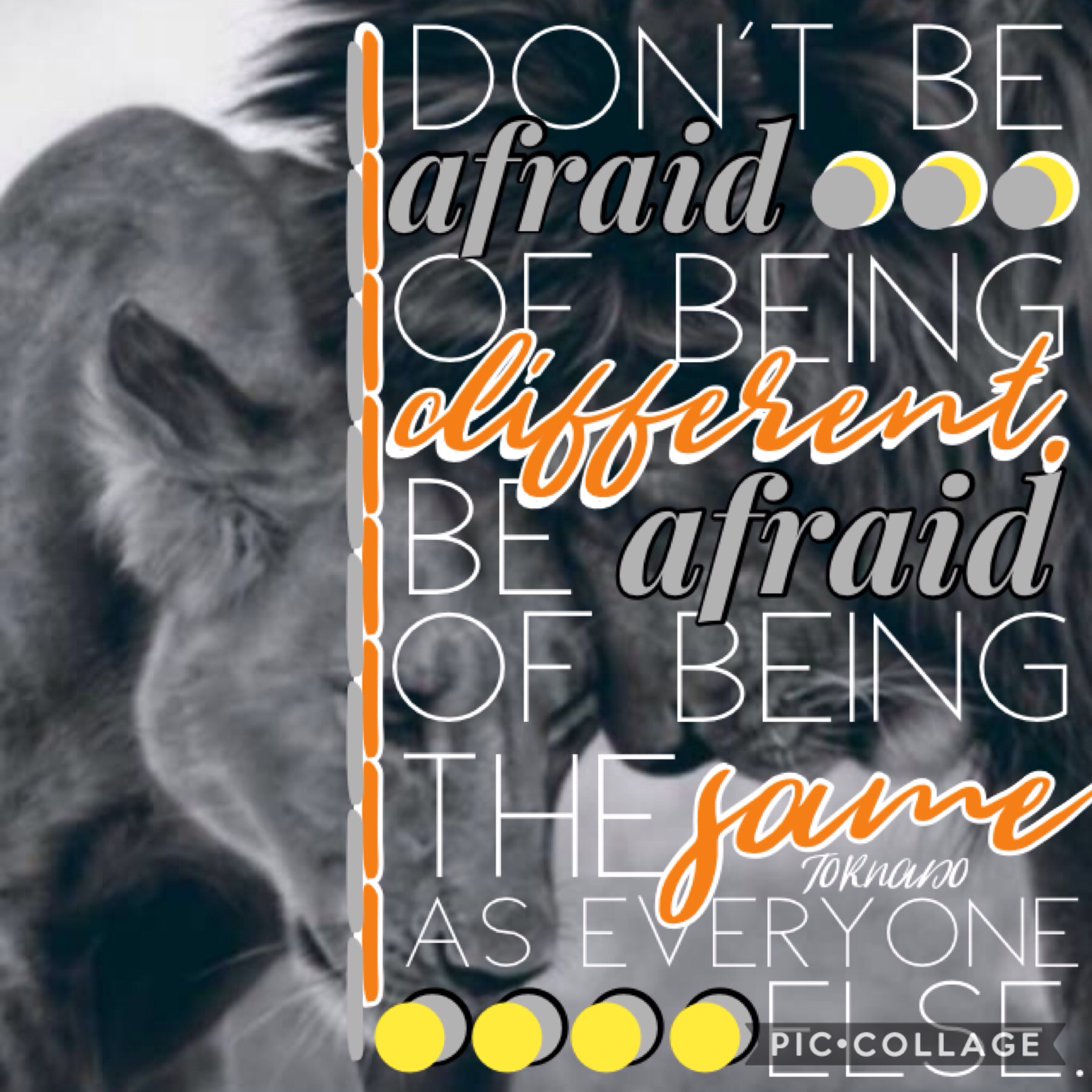 [2-12-19] I really love this quote. Remember that there's nothing wrong with being different!💕 After all, normal people are boring😜😜 📷photo credit: --INSPIRATIONAL--📷 ❤️❤️❤️