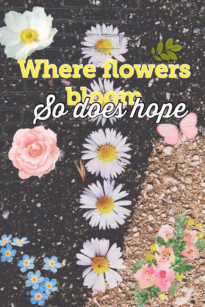 💞Tap💞 There is always hope so don't ever give up.