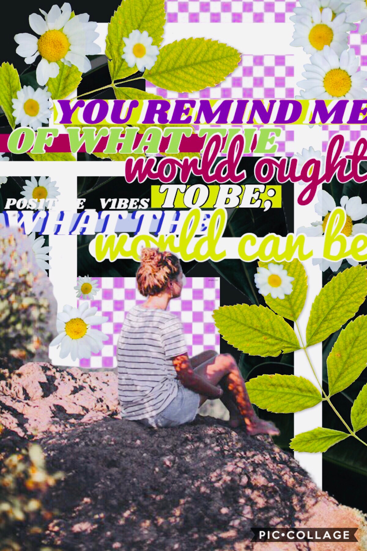 """🥗Quote from, """"Queen Of Shadows""""🥗Excuse this horrible collage, I tried🥗I'm working on my December Monthly bullet journal🥗SALAD ALWAYS🥗I have religious class tomorrow, I know nothing🥗 #PCONLY #SALADALWAYS #SALADWINS #EXCUSETHE #COLLAGE #DECEMBERR #BULLET #J"""