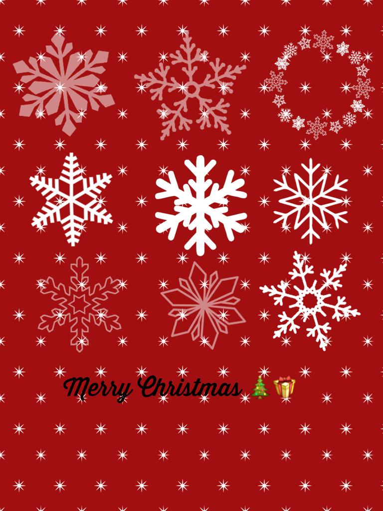 Merry Christmas 🎄🎁