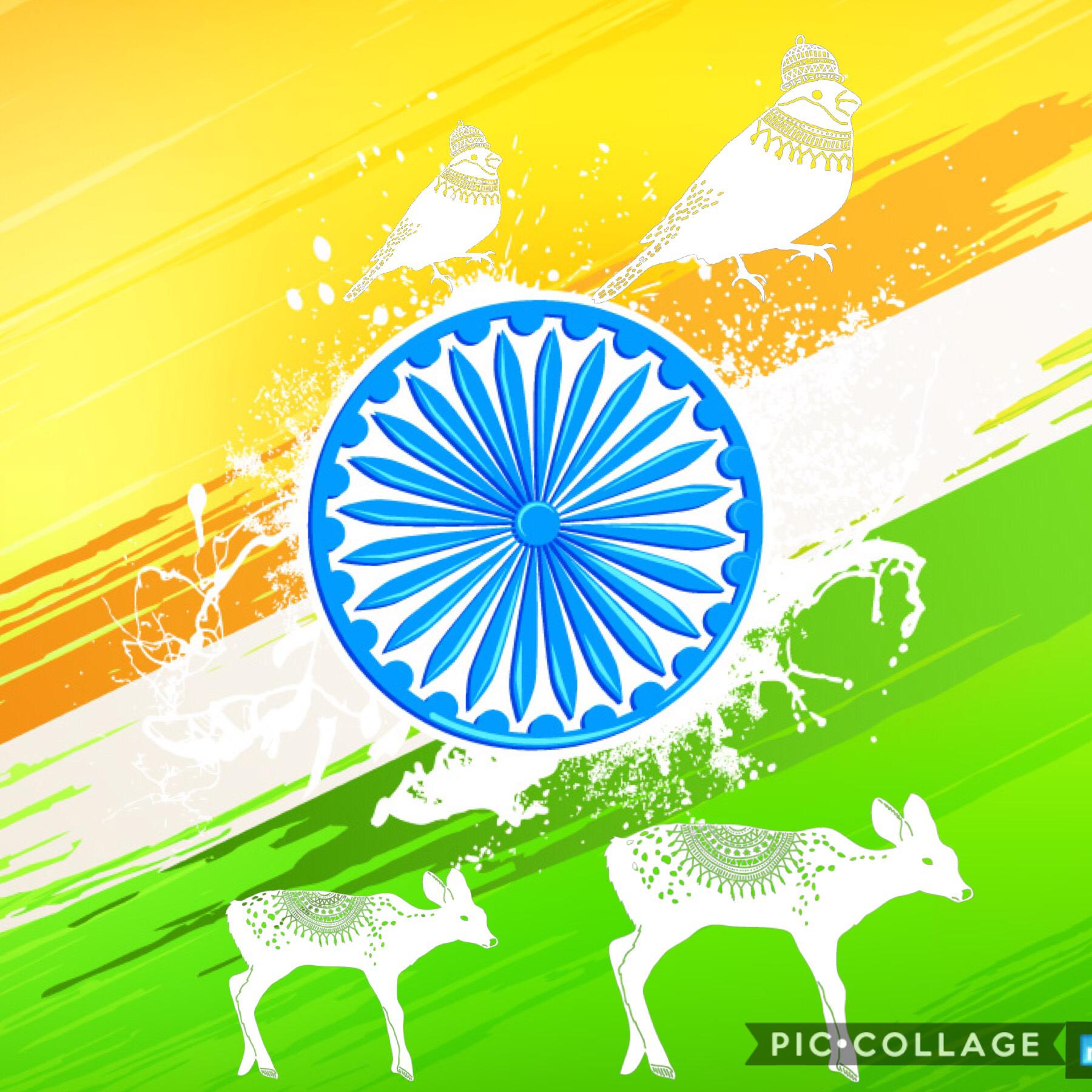 India 🇮🇳
