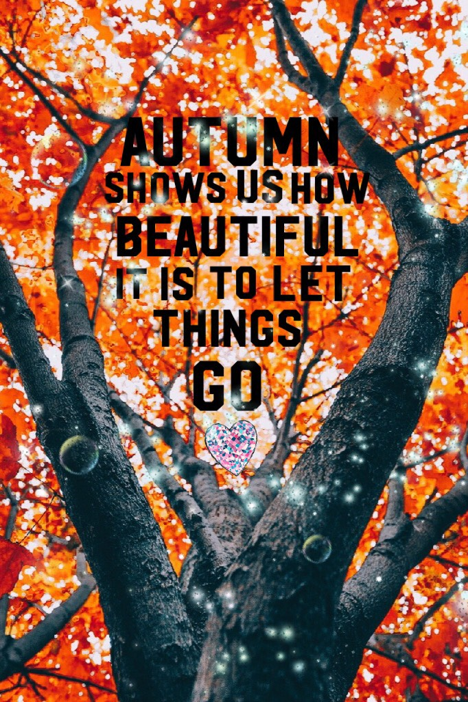 ✴️Autumn shows us how beautiful it is to let things go✴️