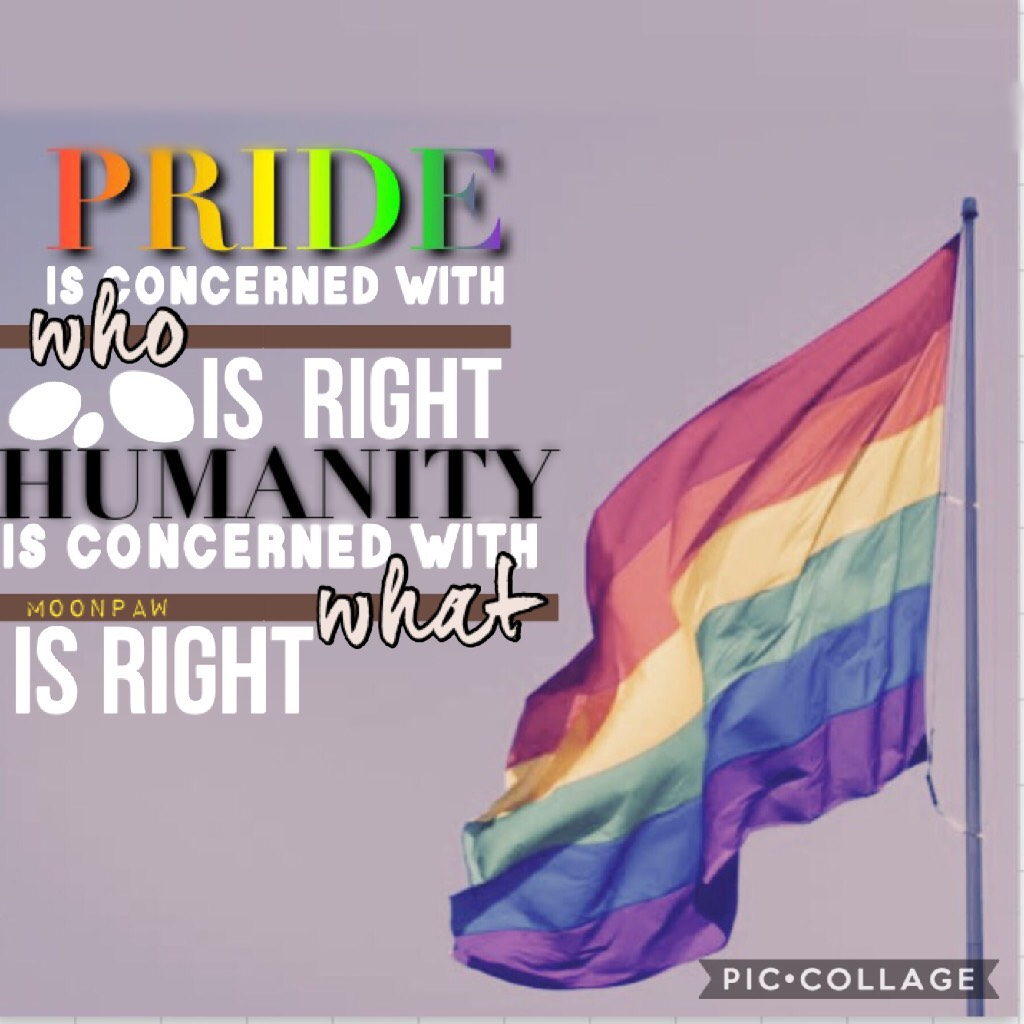 My entry to PicCollage's pride contest! 🌈🏳️🌈 QOTD: Most relatable moment out of these two? 1. Looking at your textbook and thinking such a waste of trees 2. Having a teacher that says no don't pack up yet, there's still 23 seconds left of class