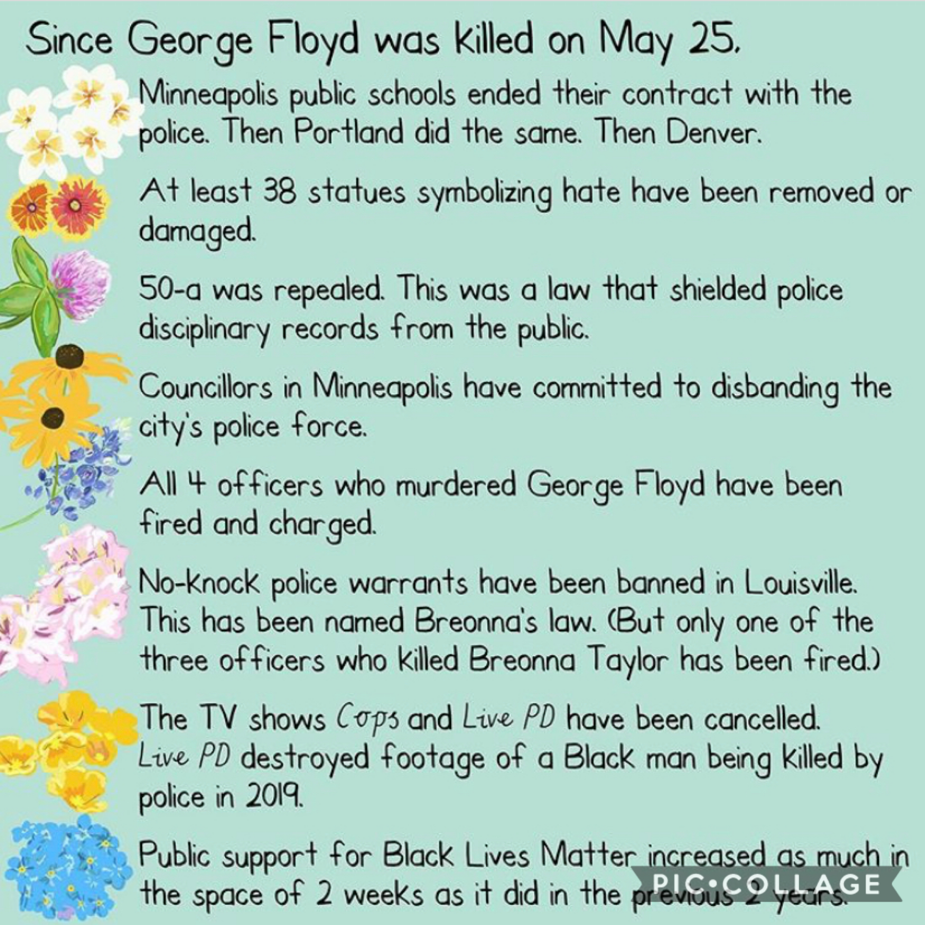 these facts are as of june 24 ♥️ sadly, in the space of 30 days, 74 lives pulled up from the earth before they had their time. whether you're feeling despair or hope (& you've got reason for both), keep going 🙏🏽💘 blm.