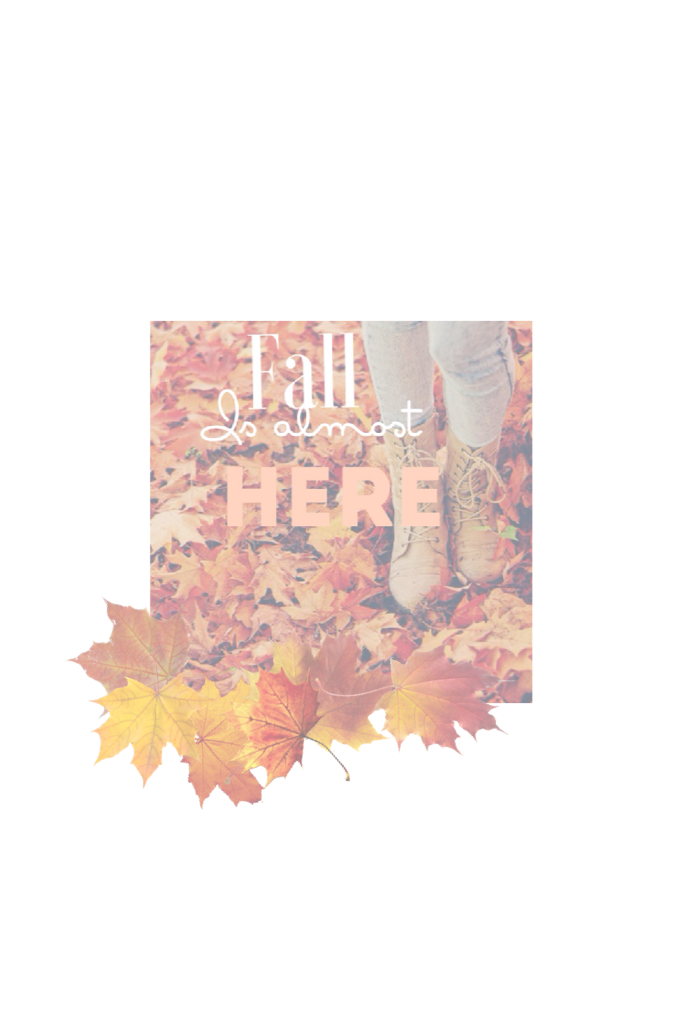 Almost here!🍁🍂🌰🍄