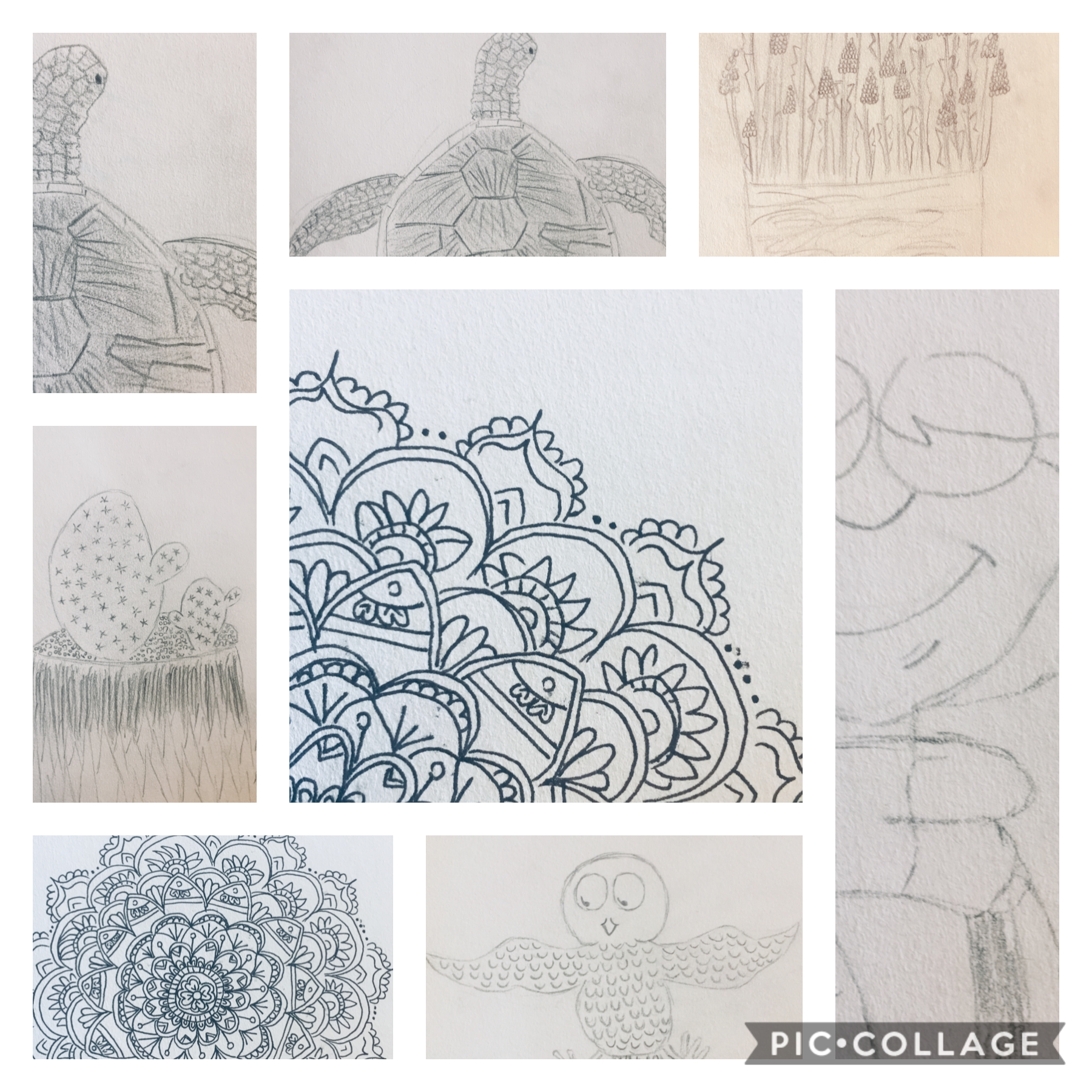 Some of my artworks.. please I really need more ideas. Comment below (and like❣️) Thanks..