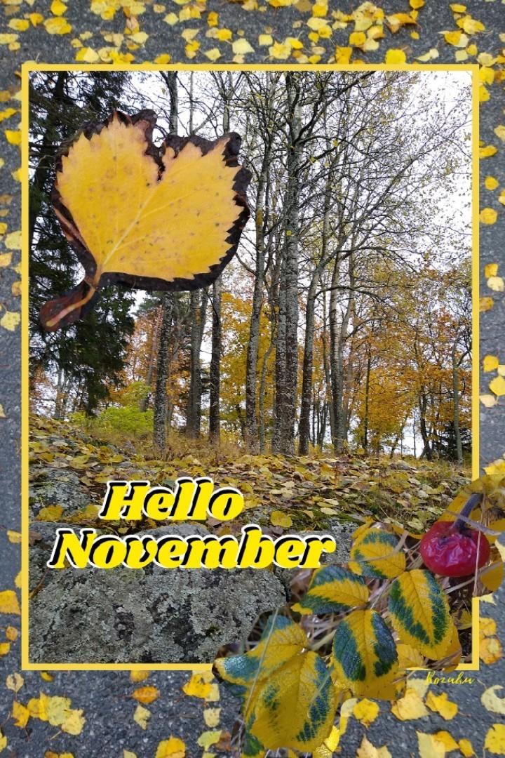 Here we go; Welcome November! Time for cozy indoor activities 😍