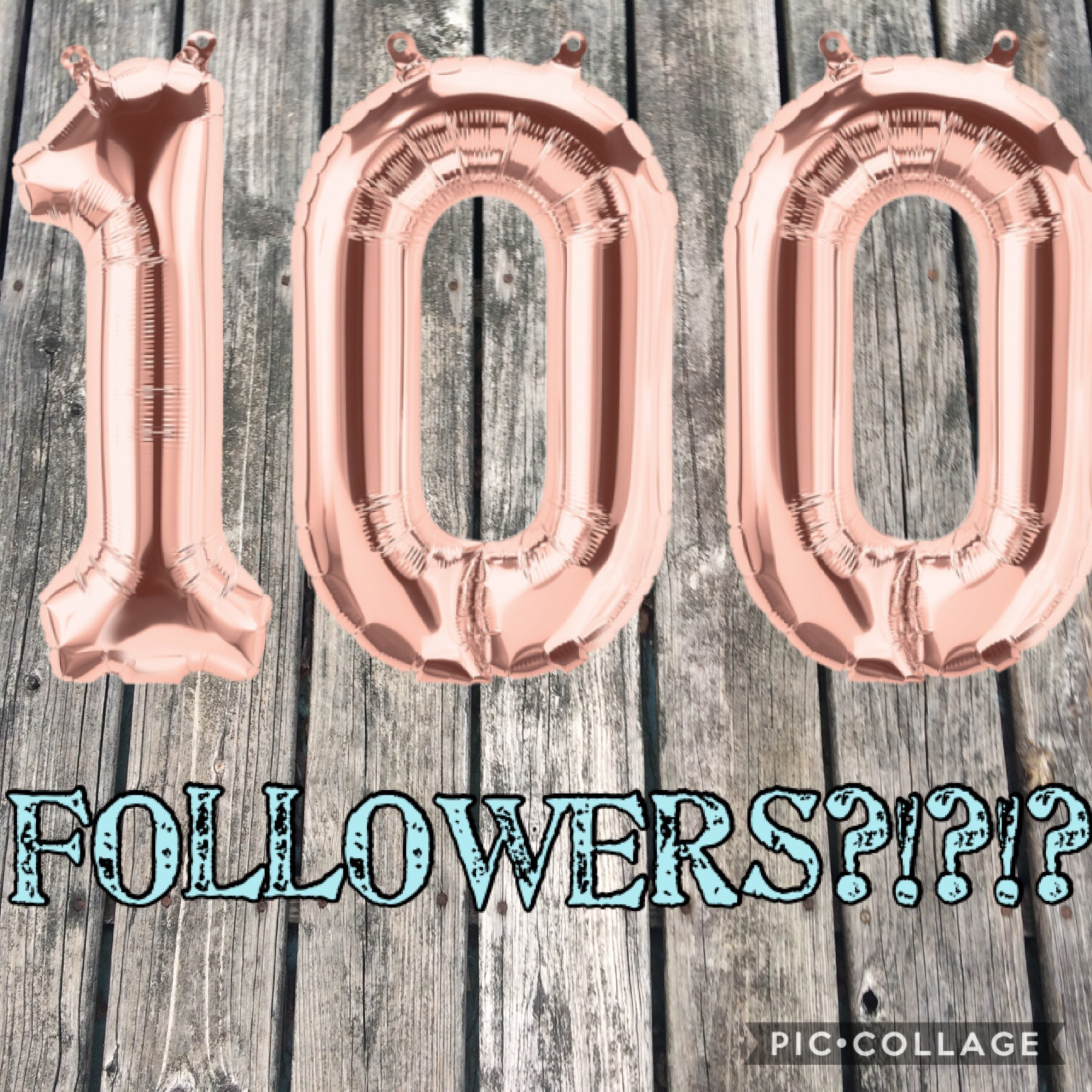 100 followers! I can't believe it! Thank you so much to each and every one of you!!!