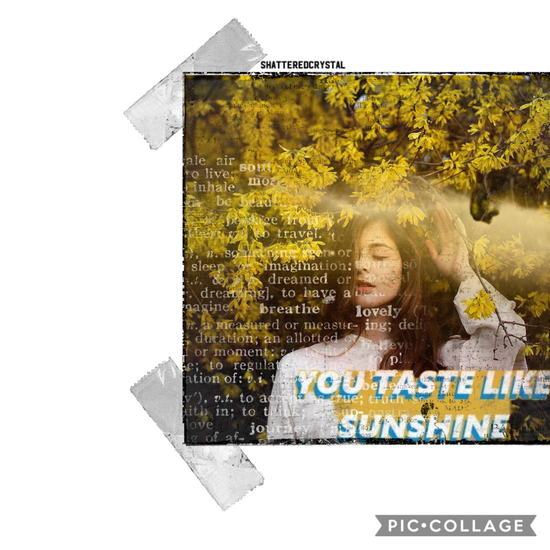 i made this a longgggg time ago and has just been in my collages😅💛☀️