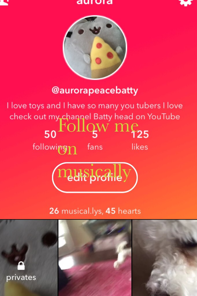 Follow me on musically