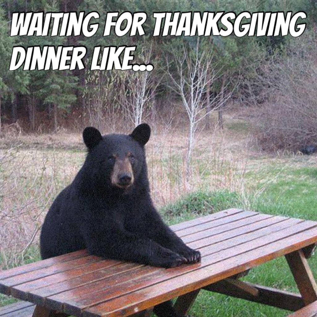 Waiting for Thanksgiving dinner like...