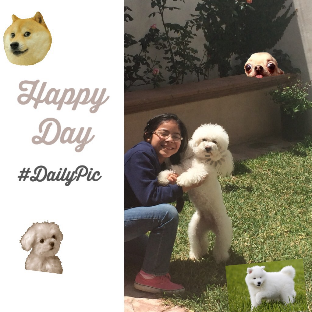 Happy Day with my pet 🦄🐶😝😍😂