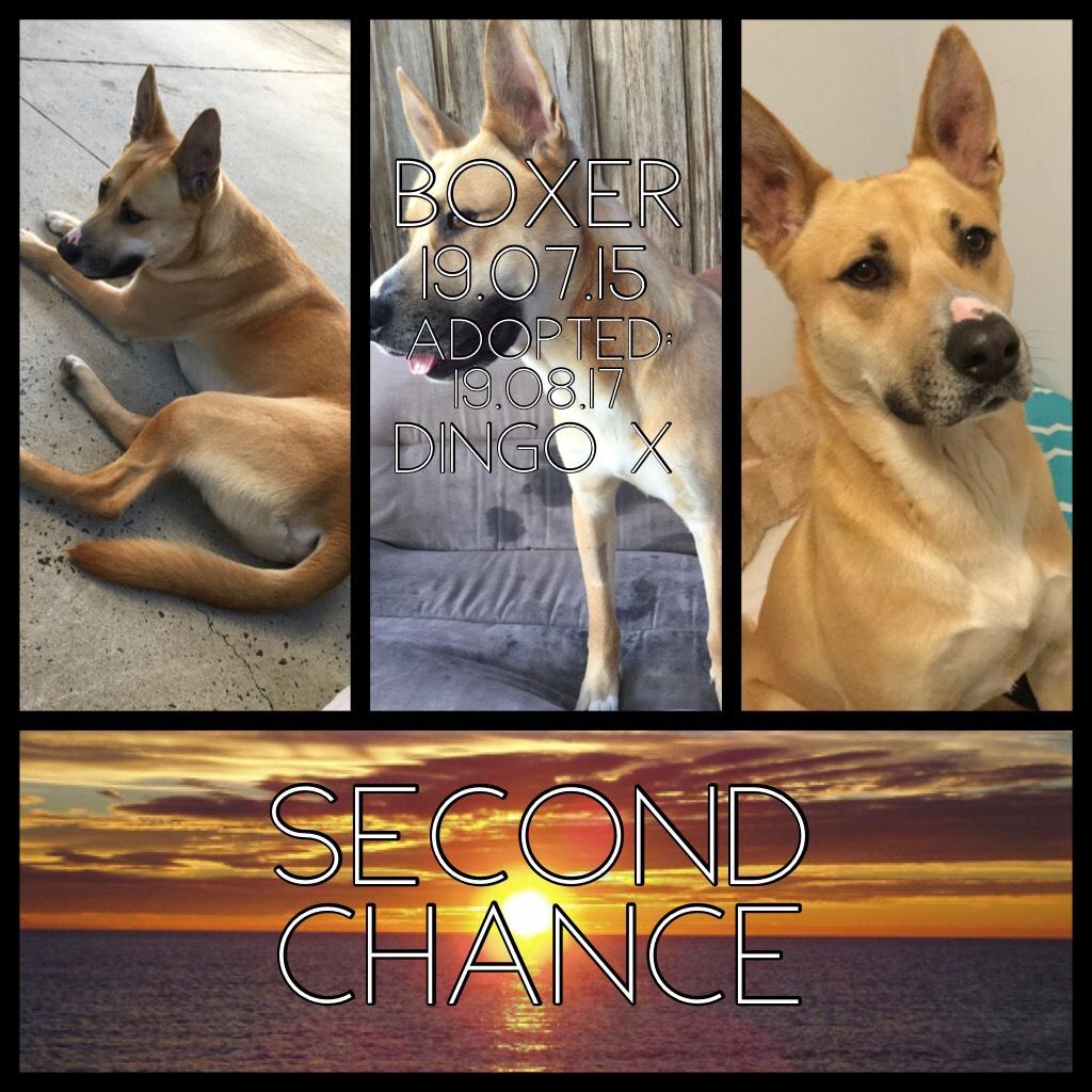 He got a second chance. ❤️