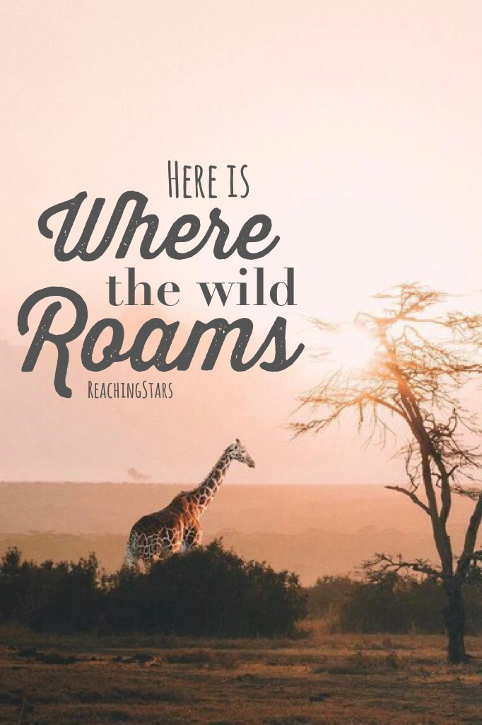 A little simple😕 (CLICK!)      QOTD...What is your favorite wild animal?  R E M I N D ER : Tomorrow is June!