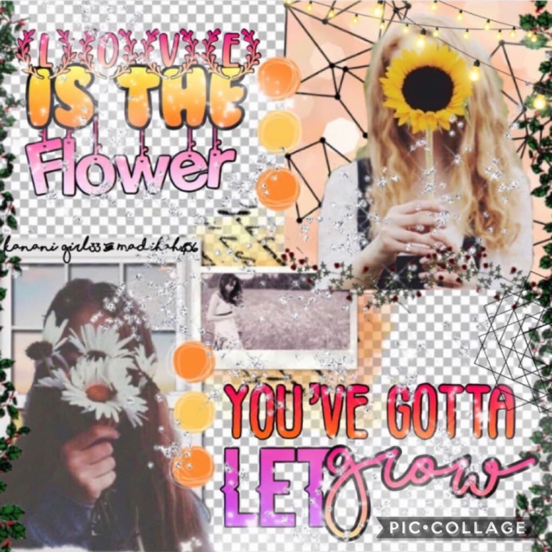 Collab with ♥️♥️♥️ Madihah456!!!!! This girl is just amazing!! She did the background and I did the text!  Qotd: what is your favorite flower? Answer with an emoji 🌺🌹🌷🌸🌻💐