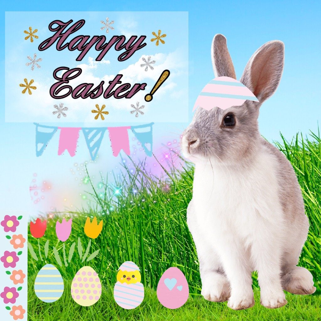 🥚 30 eggs in the PC contest?🐣..... Happy Easter! ✝️ Q: Fav festival? A: Christmas