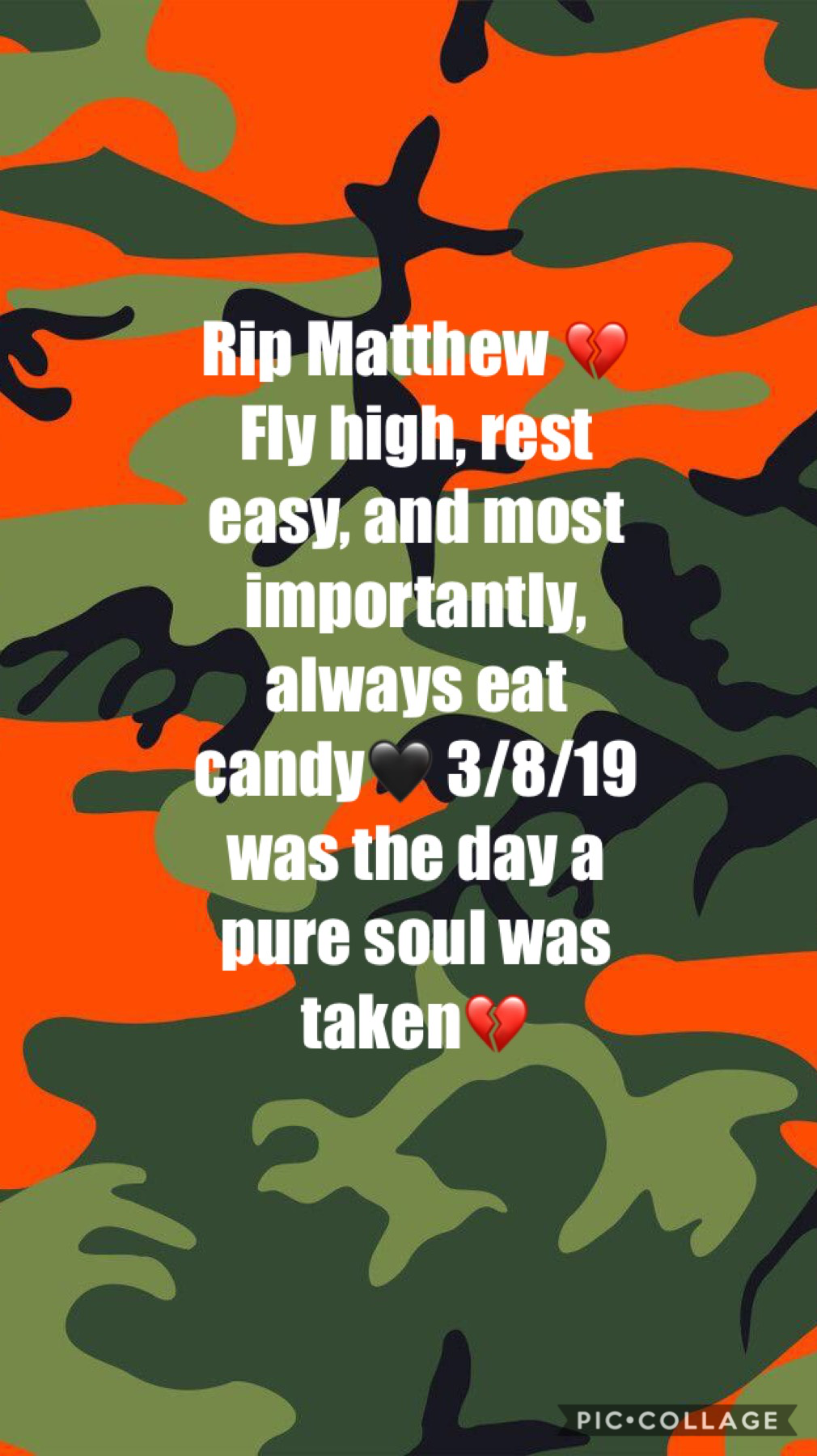 I'll always remember one of my best friends💔 he was a pure soul no matter how manny times he took my candy 🙃💚 RIP Matthew~ 3/8/19💔❣️