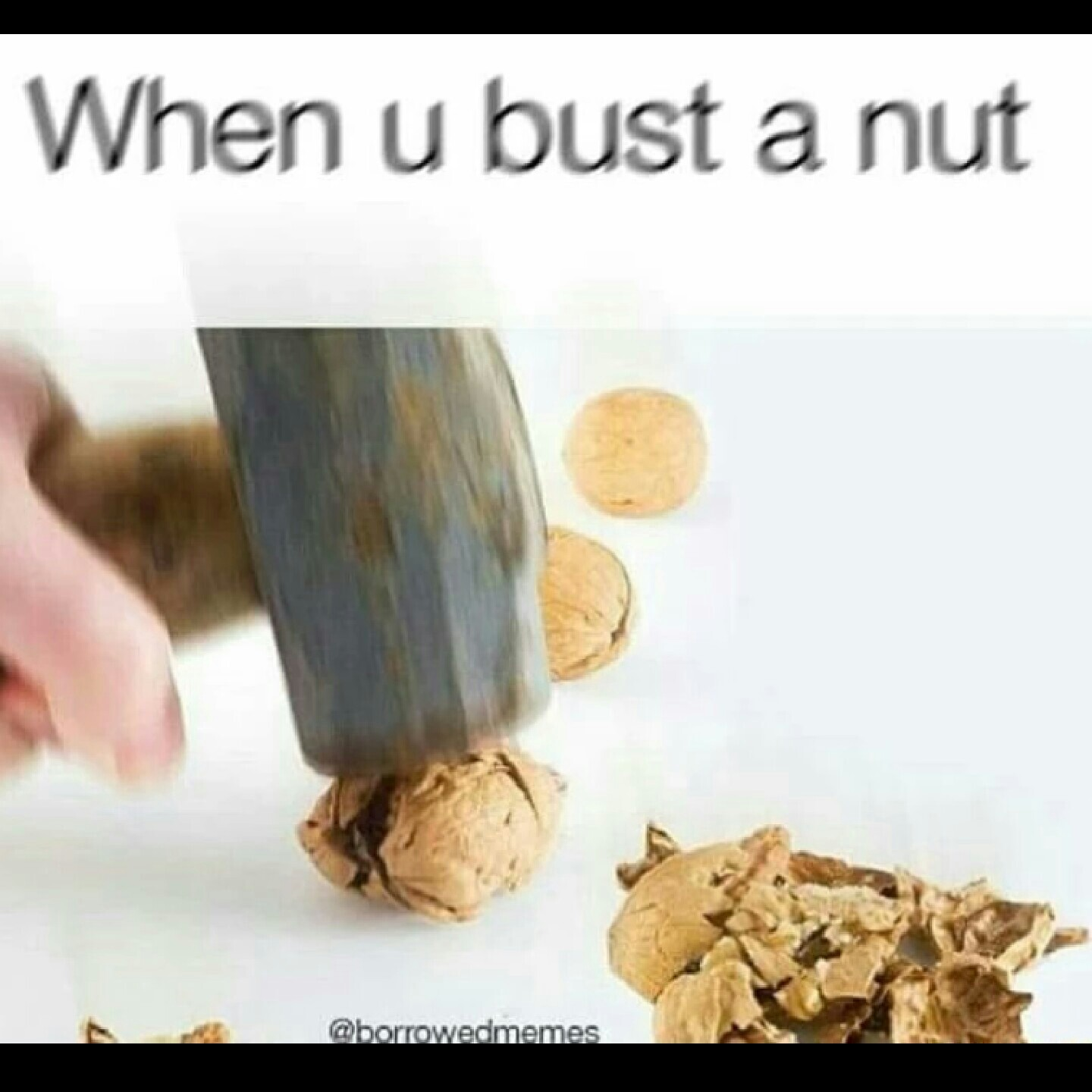 Sex bust a nut in my pussy sized