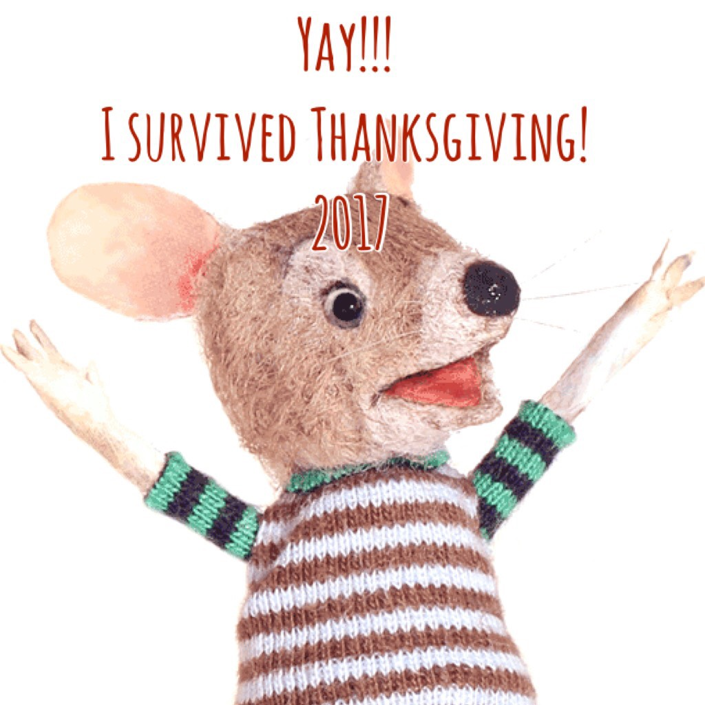 I survived Thanksgiving 2017 Mouse
