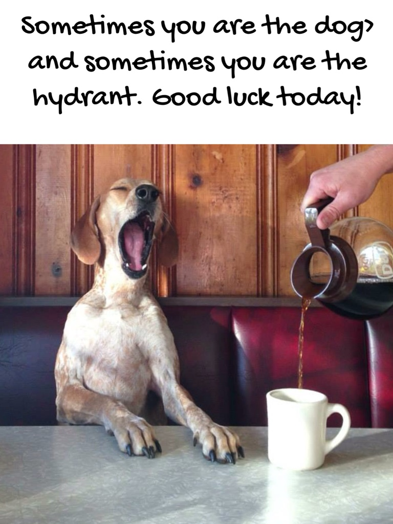 Sometimes you are the dog> and sometimes you are the hydrant. Good luck today!